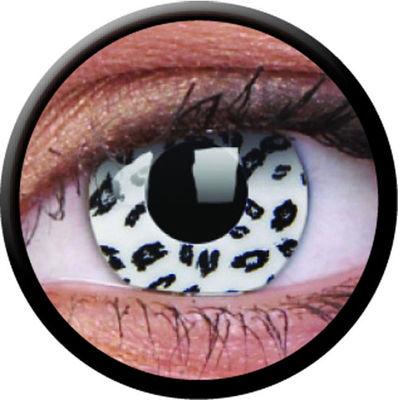 ColourVue Crazy šošovky - White Leopard (2 ks ročné) - nedioptrické