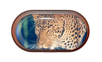 Púzdro so zrkadielkom Divoká zvieratá - Leopard