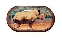 Púzdro so zrkadielkom Divoká zvieratá - Nosorožec