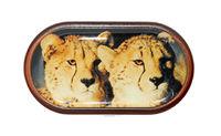 Púzdro so zrkadielkom Divoká zvieratá - Gepardy