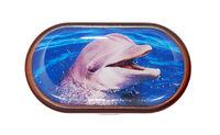 Púzdro so zrkadielkom Divoká zvieratá - Delfín