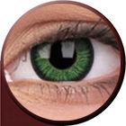 Phantasee Vivid - Green (2 šošovky trojmesačné) - nedioptrické