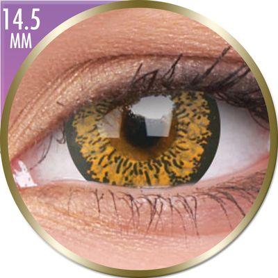 Phantasee Big Eyes - Baby Brown (2 šošovky mesačné) - dioptrické - doprodej