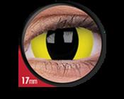 ColourVue Crazy šošovky 17 mm - Cheetara (2 ks ročné) - nedioptrické